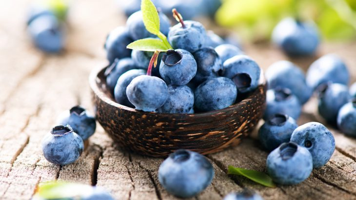 blueberries_offer_a_wide_variety_of_remarkable_health_benefits_730x410.jpg